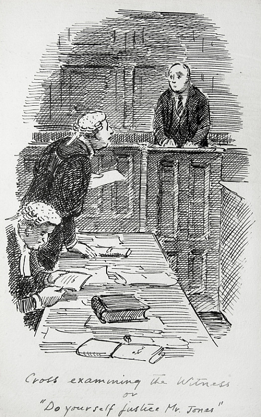 Cross-Examining the Witness