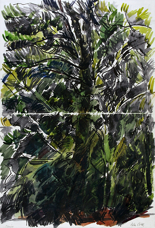 Forest, Claviers