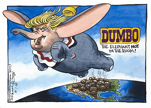 Dumbothe Elephant Not In the Room!