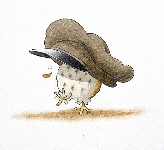 The Owl Doesn't Like Hats. She Says That, Generally Speaking, They Don't Suit Her. but She Does Like Party Hats
