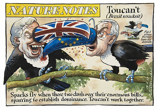 Nature Notes