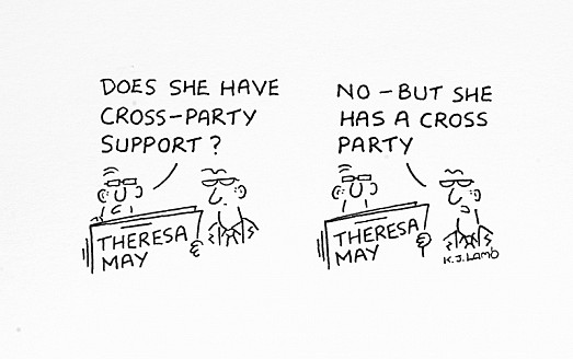 Does She Have Cross-Party Support?