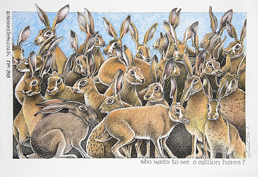 Who Wants to See a Million Hares?