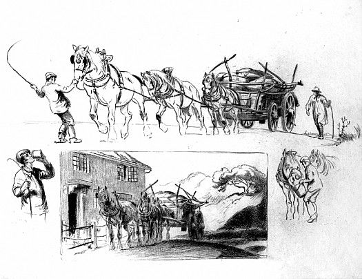 Cart Horses: a Sheet of Studies
