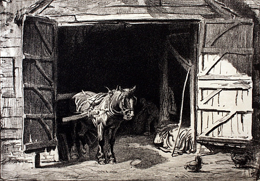 Horse In Barn Doorway, C1919