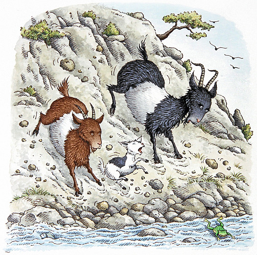 The Three Billy Goats Gruff Started Off Down the Hillside, Slowly At First, then Faster and Faster as It Became a Race to the Bottom