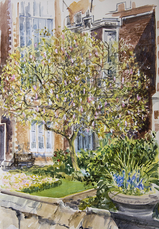 Magnolia, Middle Temple Garden