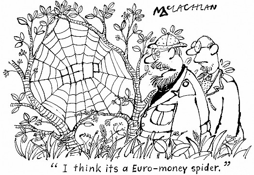 """I Think Its a Euro - Money Spider."""