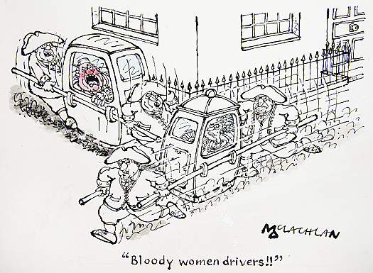 Bloody women drivers!!