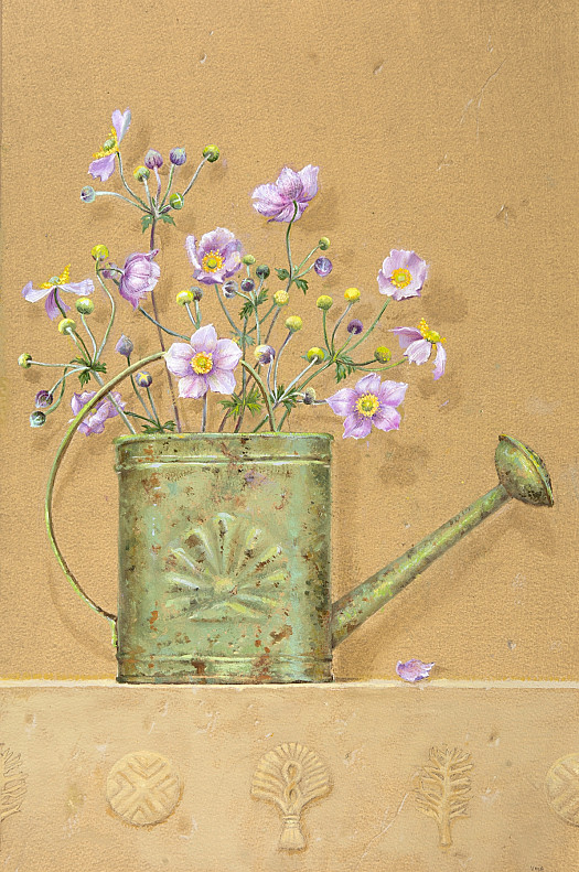 Watering Can and Japanese Anenomes