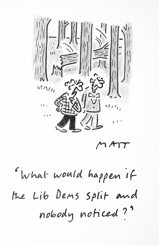What Would Happen if the Lib Dems Split and Nobody Noticed?