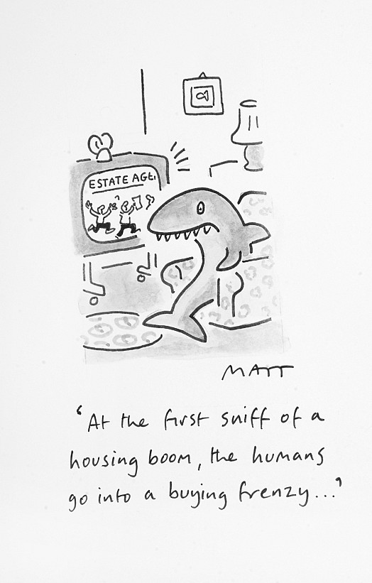 At the First Sniff of a Housing Boom, the Humans Go Into a Buying Frenzy...