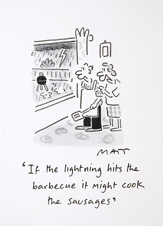 If the Lightning Hits the Barbecue It Might Cook the Sausages