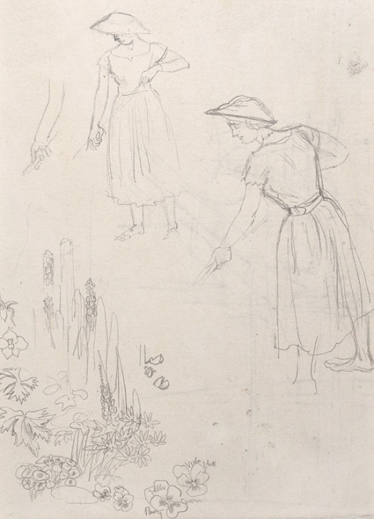 Study For 'Corner of the Greenhouse'
