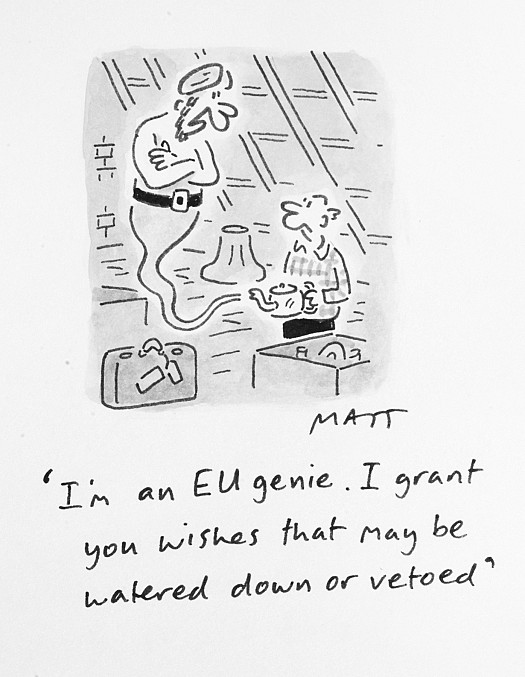 I'm an Eu Genie. I Grant You Wishes That May Be Watered Down or Vetoed