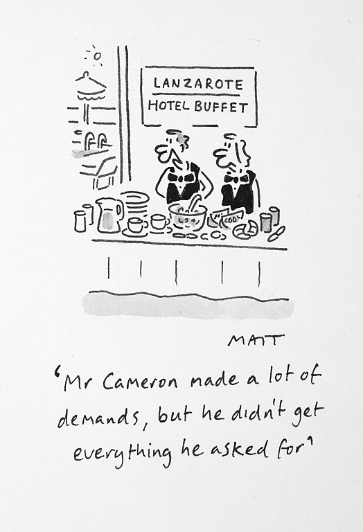 Mr Cameron Made a Lot of Demands, but He Didn't Get Everything He Asked For