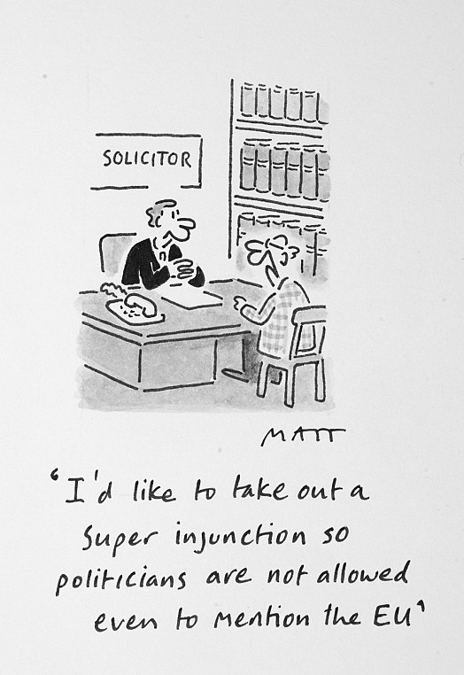 I'd Like to Take Out a Super Injunction so Politicians Are Not Allowed Even to Mention the Eu