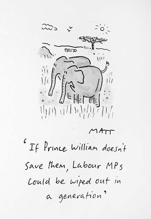 If Prince William Doesn't Save Them, Labour Mps Could Be Wiped Out 