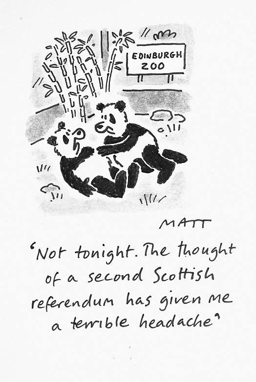Not Tonight. the Thought of a Second Scottish Referendum Has Given Me a Terrible Headache