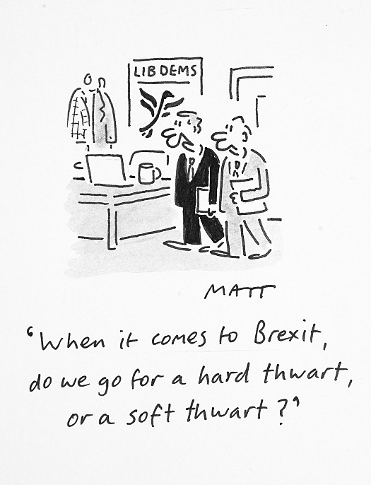 When It Comes to Brexit, Do We Go For a Hard Thwart, or a Soft Thwart?
