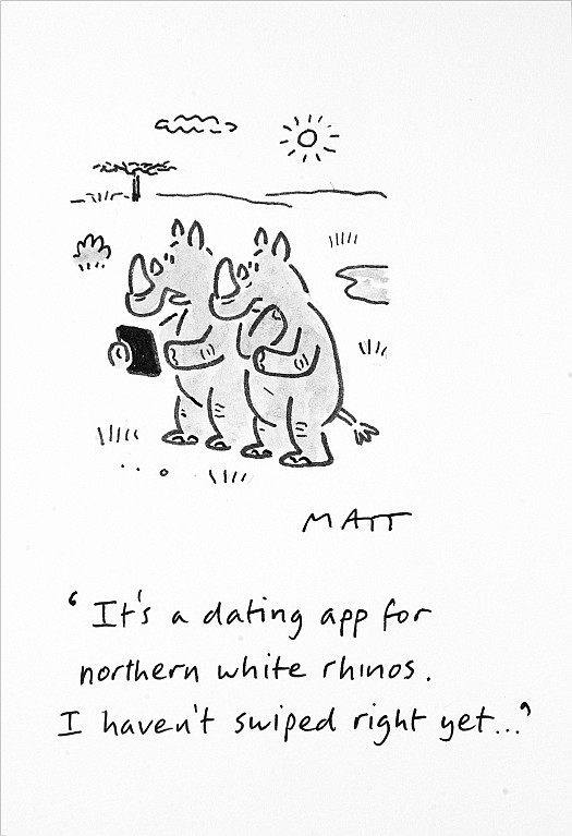 It's a Dating App For Northern White Rhinos. I Haven't Swiped Right Yet...
