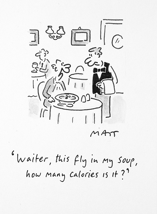 Waiter, this Fly In My Soup, How Many Calories Is It?