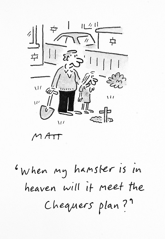 When My Hamster Is In Heaven Will It Meet the Chequers Plan?