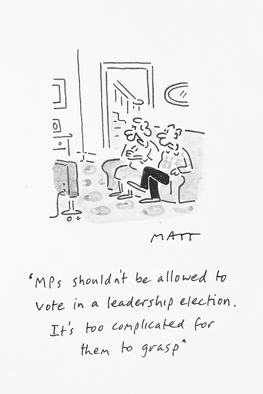 Mps Shouldn't Be Allowed to Vote In a Leadership Election. It's Too Complicated For Them to Grasp