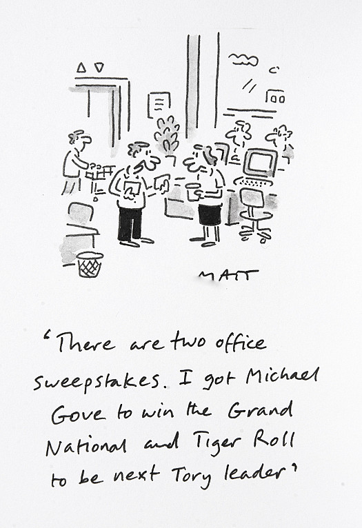There are two office sweepstakes. I got Michael Gove to win the Grand National and Tiger Roll to be next Tory leader