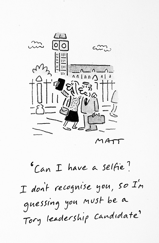 Can I have a selfie? I don't recognise you, so I'm guessing you must be a Tory leadership candidate