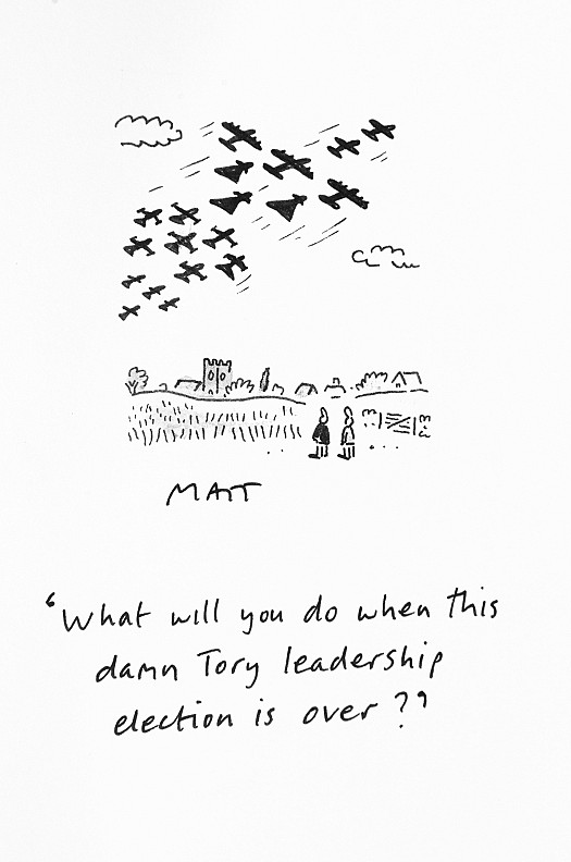 What will you do when this damn Tory leadership election is over?