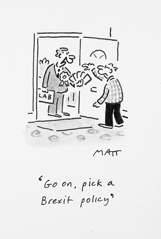 Go on, pick a Brexit policy