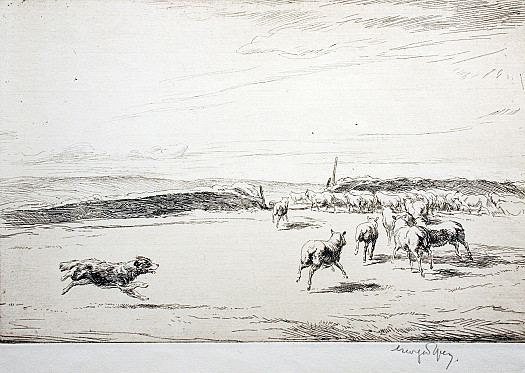 Collie Rounding Up Sheep I, C1919