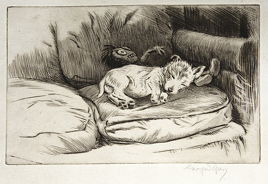 The Gollywog and the Sleeping Puppy, C1927