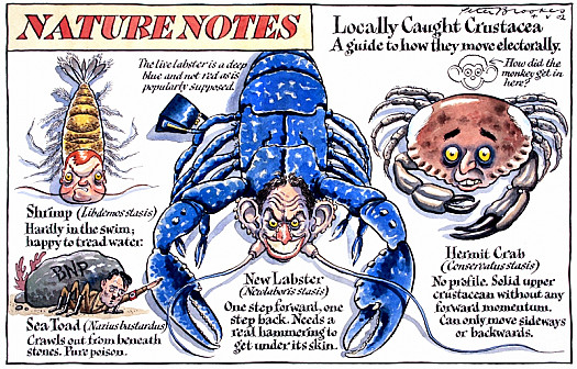 Locally Caught Crustacea