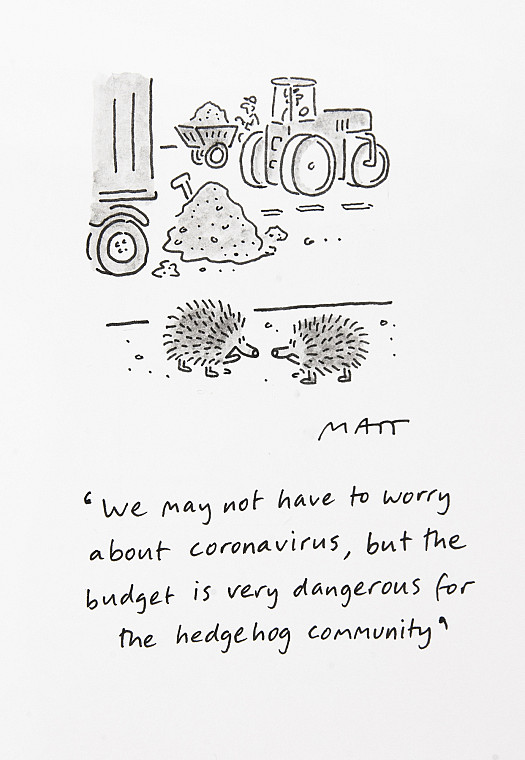 We may not have to worry about coronavirus, but the budget is very dangerous for the hedgehog community