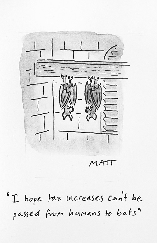 I hope tax increases can't be passed from humans to bats