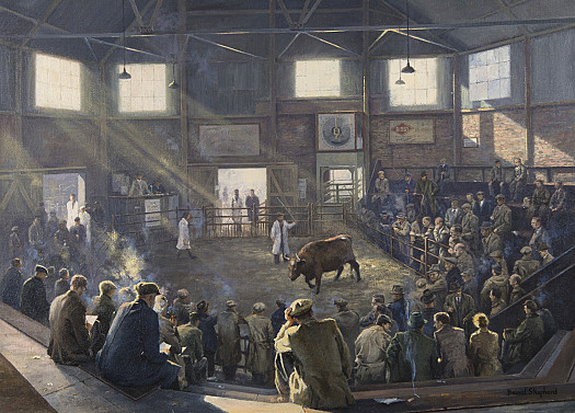 Reading Cattle Market