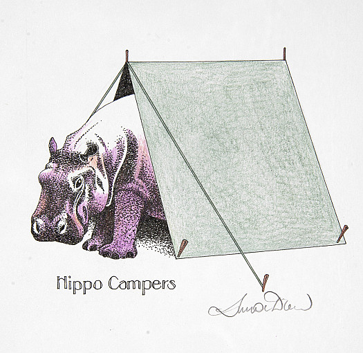 Hippo Campers