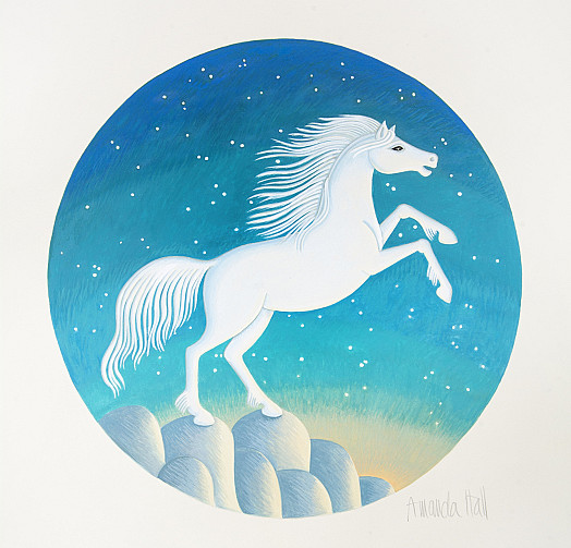 A Beautiful White Horse was to be Set Free