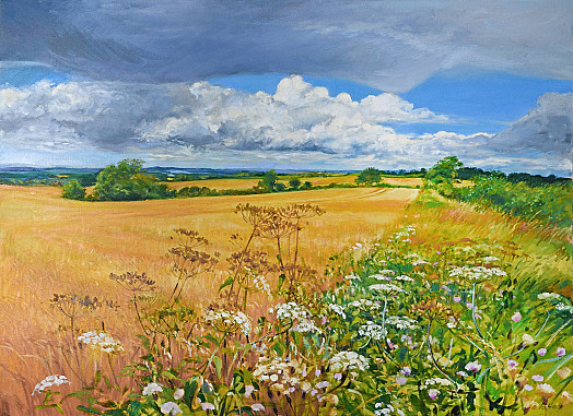 Storm Clouds over Ripening Fields, Near Mickleton