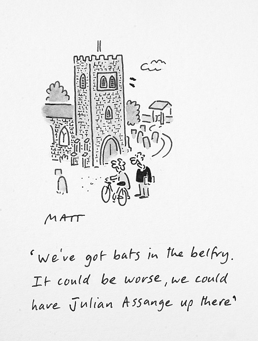 We've Got Bats In the Belfry. It Could Be Worse, We Could Have Julian Assange Up There
