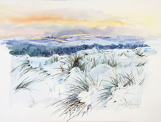 Snow on the Dunes, Studland, Dorset