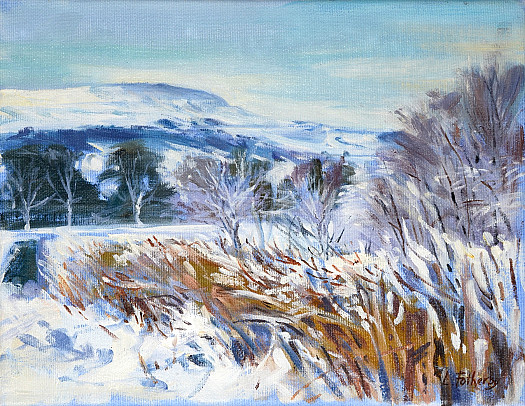 Witton Fell, Snow