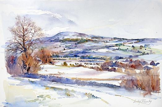 January Snow Fall, Harmby