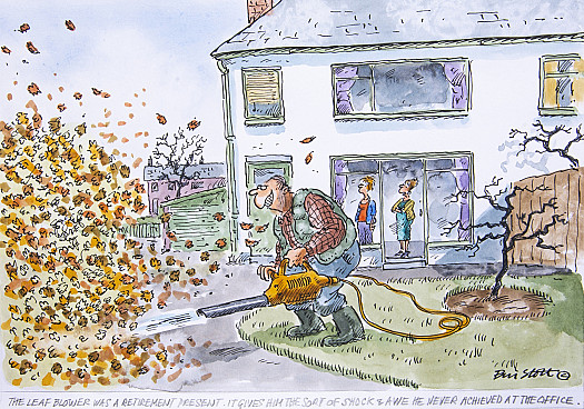 The leaf blower was a retirement present. It gives him the sort of shock & awe he never achieved at the office