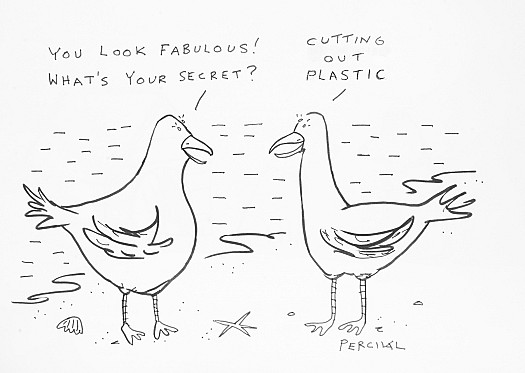 'You look fabulous! What's your secret?''Cutting out plastic'