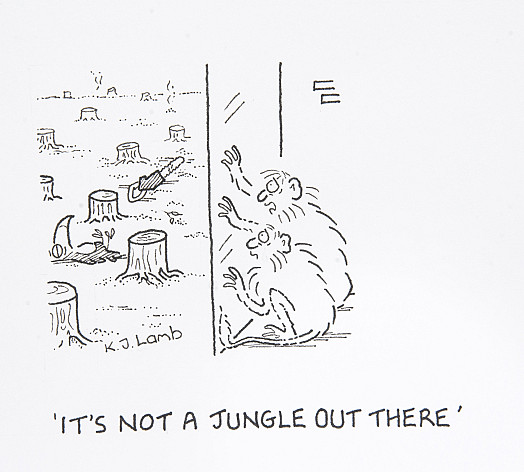 It's not a jungle out there