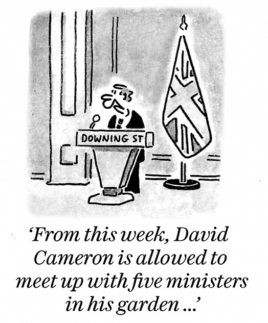 From this week, David Cameron is allowed to meet up with five ministers in his garden