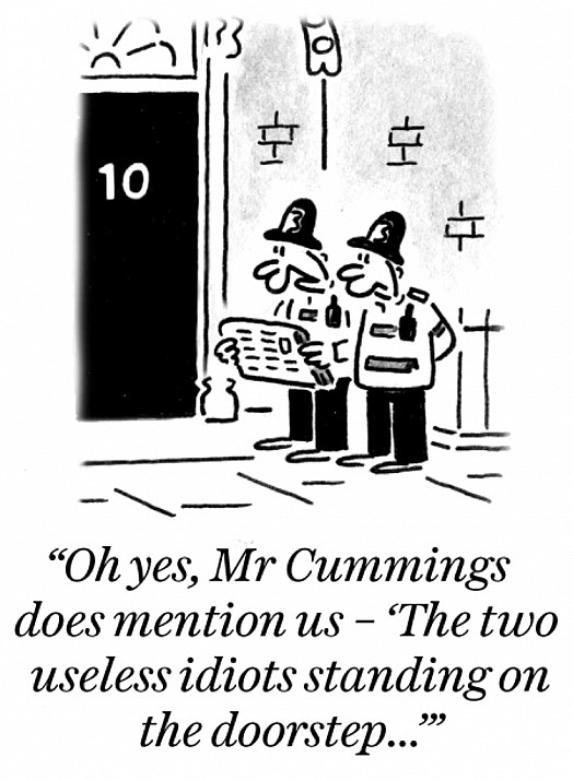 Oh yes, Mr Cummings does mention us - 'The two useless idiots standing on the dootstep...'
